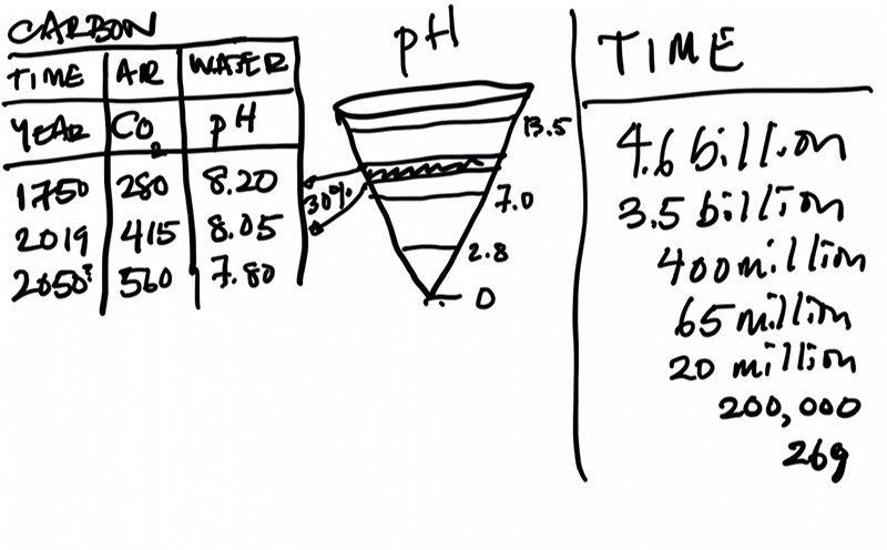 Alanna-Mitchell-graph-on-PH-levels