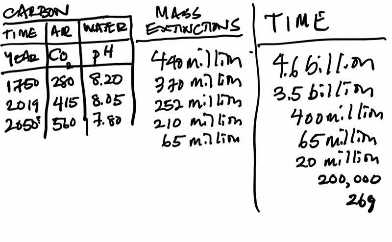 Alanna-Mitchell-graph-of-mass-extinctions