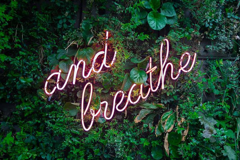 And-breathe-neon-by-Max-van-den-Oetelaar-on-Unsplash.jpg