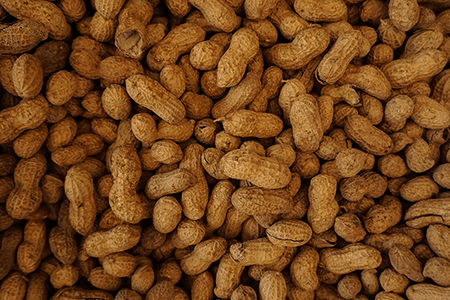 Peanuts-listing-image.png