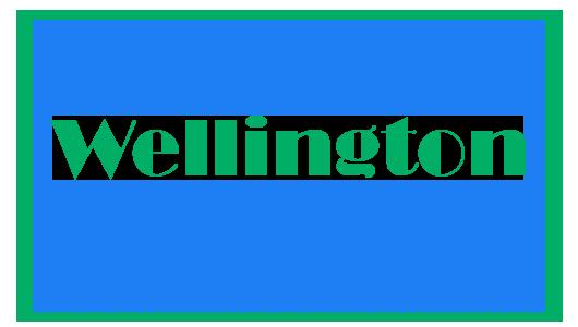 Wellington-530x300.png