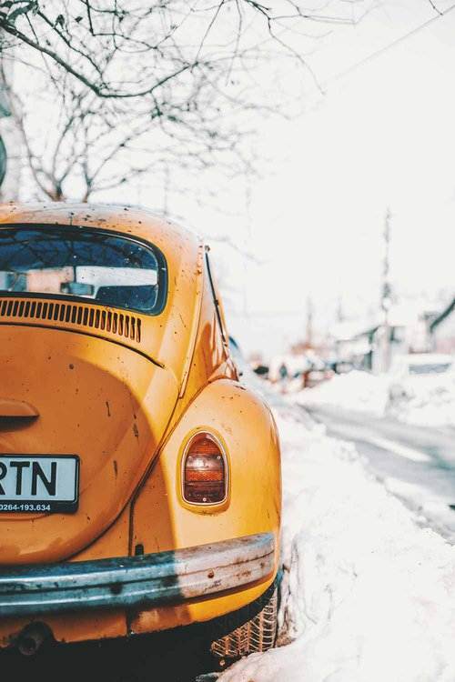beetle-stuck-in-snow-by-mihail-macri-on-Unsplash