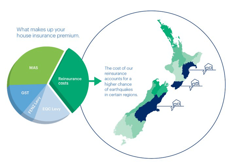 infographic-showing-piechart-components-and-map-of-NZ